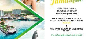 concours-jamaique