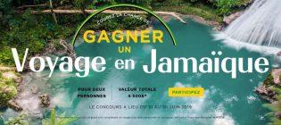 concours-la-vie-en-rose-voyage-en-jamaique
